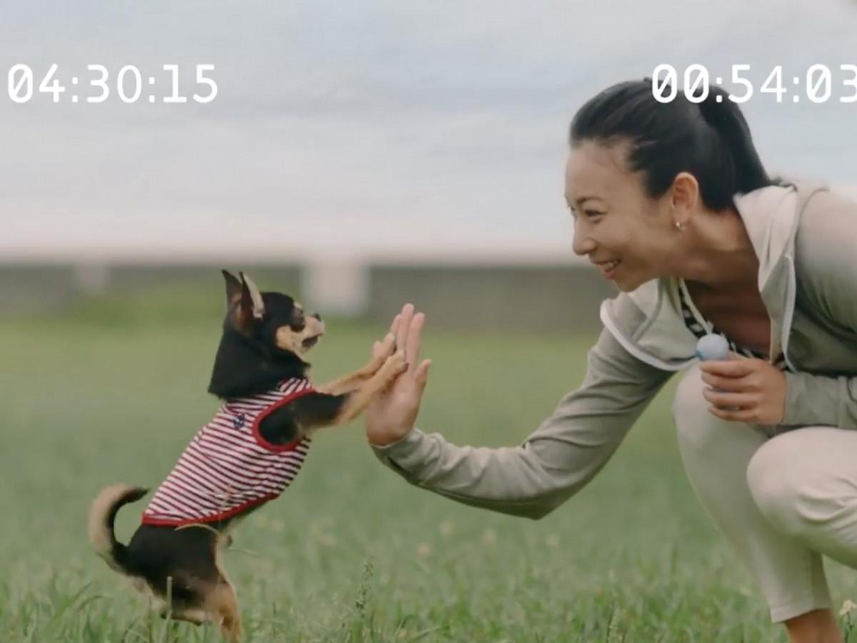 映画PET_PET×HONDA